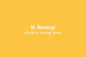 Mr Meowagi